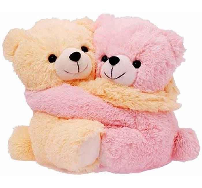 Twin Teddy Bear